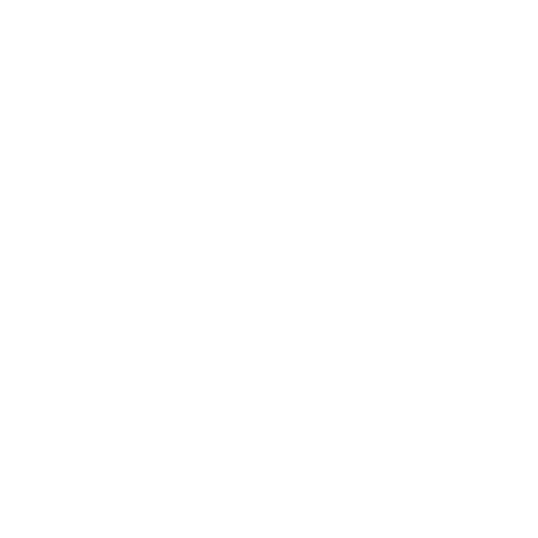 white icon representing precinct locator